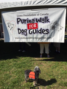 purina walk sign